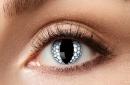 Eye lenses - White Dragon - 12 month