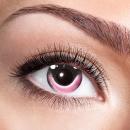 Eye lenses - Rabbit - 12 month